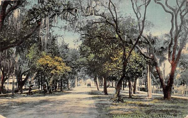Valusia Avenue Daytona, Florida Postcard