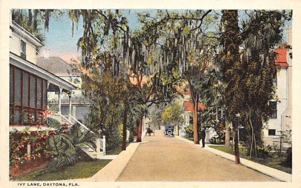 Ivy Lane Daytona, Florida Postcard