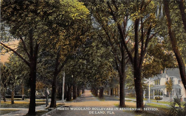 North Woodland Boulevard in Residential Section De Land, Florida Postcard