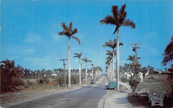 East Atlantic Avenue Delray Beach, Florida Postcard