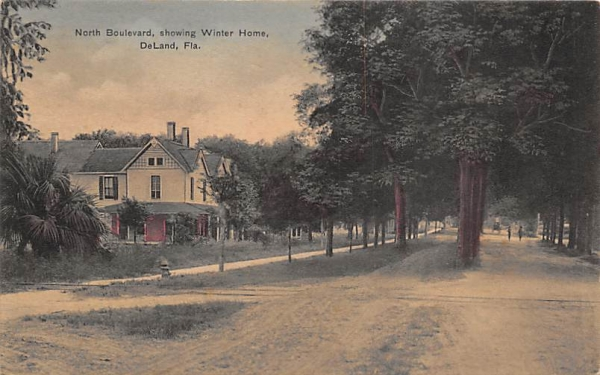 North Boulevard, Showing Winter Home De Land, Florida Postcard