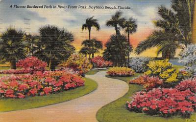A Flower Bordered Path in River Front Park Daytona Beach, Florida Postcard