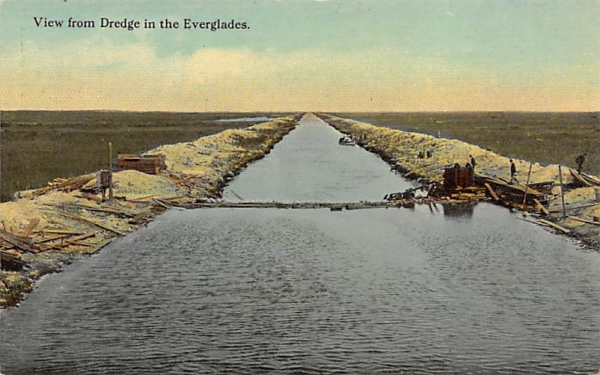 View from Dredge in the Everglades Florida Postcard