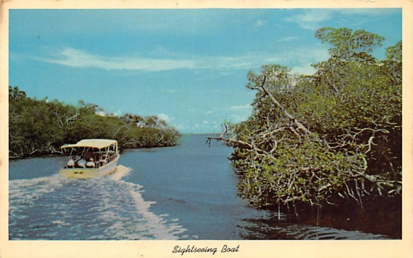 Sightseeing Boat Everglades National Park, Florida Postcard