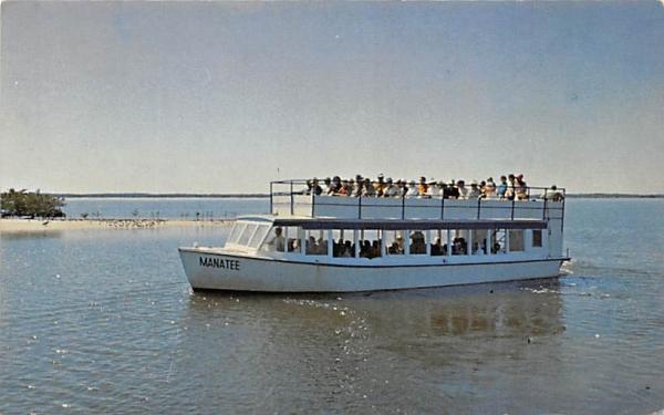 trip throught Everglades  National Park Everglades City, Florida Postcard