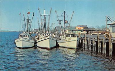 Shrimp Boats Fernandina Beach, Florida Postcard