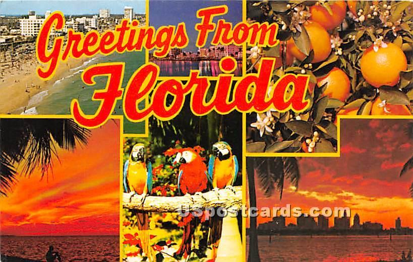 Greetings from, Florida FL Postcard