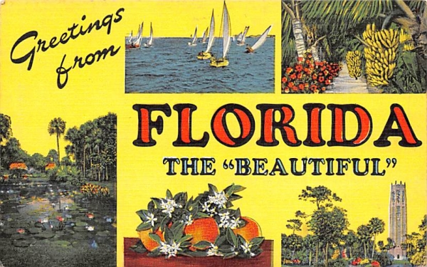 Greetings from Florida The