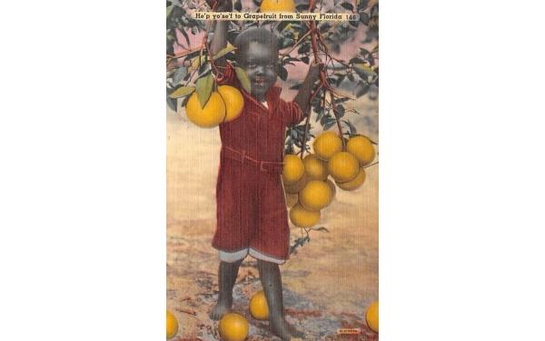 He'p yo'se'f to Grapefruit from Sunny Florida, USA Postcard