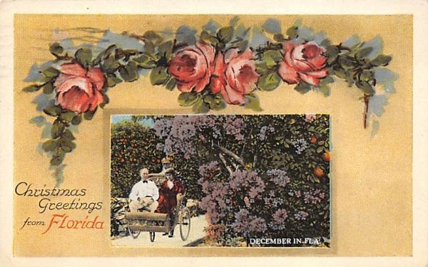 Christmas Greetings from Florida, USA Postcard