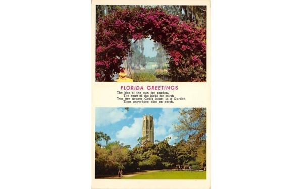 Florida Greetings, USA Postcard