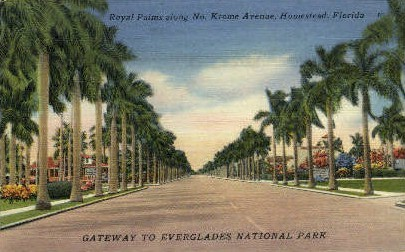 Krome Avenue - Homestead, Florida FL Postcard