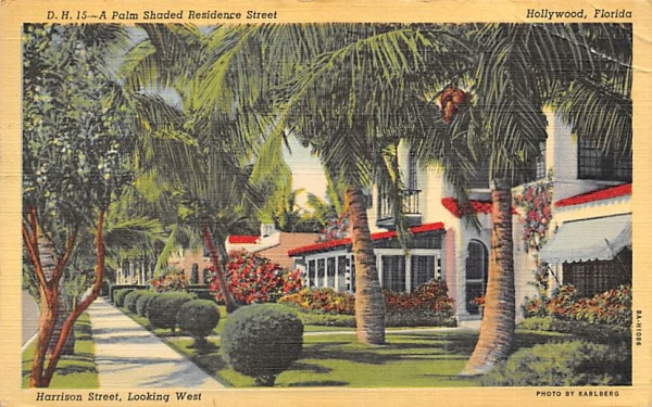 A Palm Shaded Residence Street, Harrison Street Hollywood, Florida Postcard