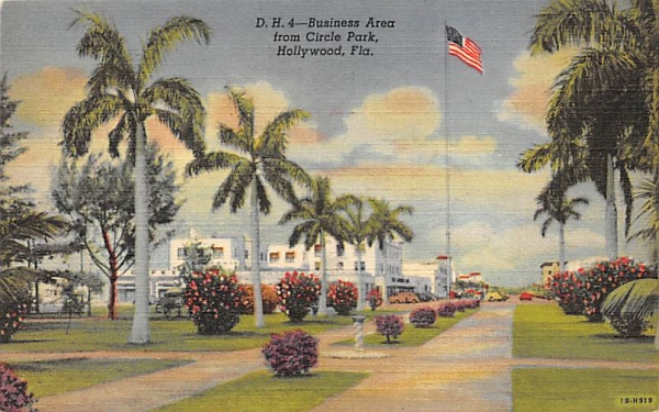 Business Area from Circle Park Hollywood , Florida Postcard