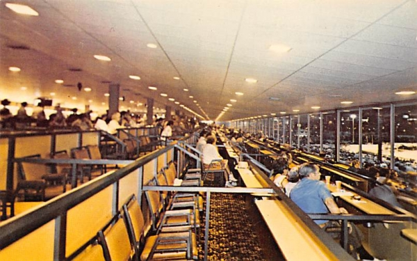 Box Seats - Fourth Floor, Hollywood Dog Track Florida Postcard
