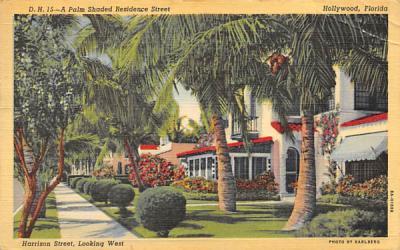 A Palm Shaded Residence Street, Harrison Street Hollywood, Florida Postcard