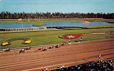 A thrilling finish at colorful Hialeah Race Course Florida Postcard