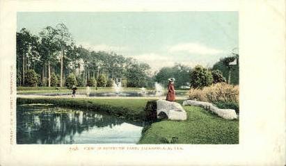 Riverside Park - Jacksonville, Florida FL Postcard