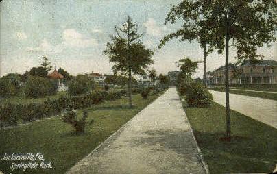 Springfield Park - Jacksonville, Florida FL Postcard