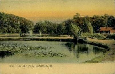 Lily Pond - Jacksonville, Florida FL Postcard