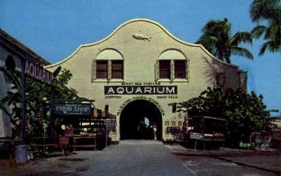 Municipal Auditorium - Key West, Florida FL Postcard