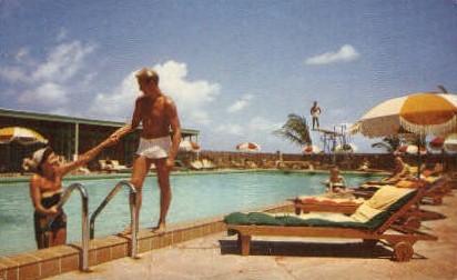 Key Wester - Florida FL Postcard