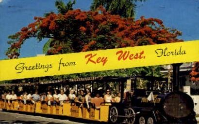 Flame Tree - Key West, Florida FL Postcard