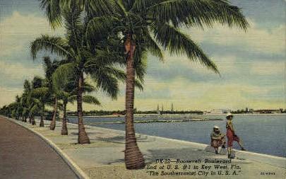 Roosevelt Bouelvard - Key West, Florida FL Postcard