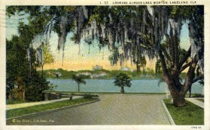 Lake Morton - Lakeland, Florida FL Postcard