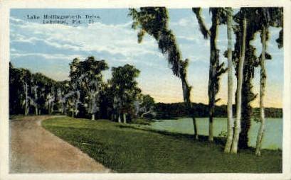 Lake Hollingsworth - Lakeland, Florida FL Postcard