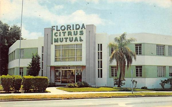 Florida Citrus Mutual Postcard