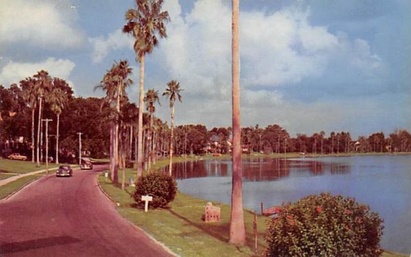 View Along Lake Morton Lakefront Looking East Lakeland, Florida Postcard