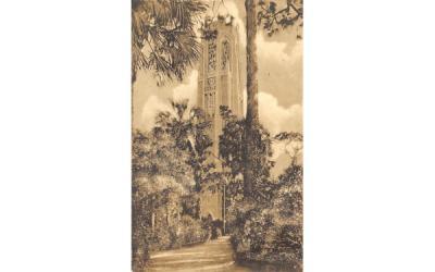 The Mountain Lake Singing Tower  Lake Wales, Florida Postcard