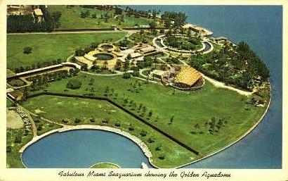 Miami Seaquarium - Florida FL Postcard