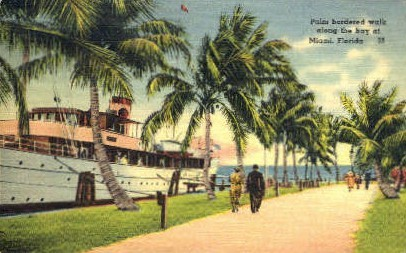 Palm walk - Miami, Florida FL Postcard