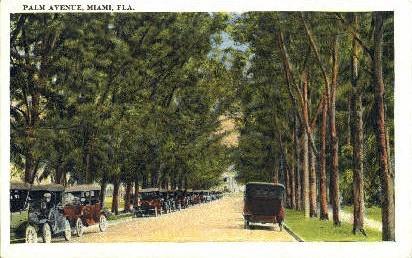 Palm Avenue - Miami, Florida FL Postcard