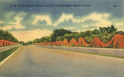 Miami Avenue - Florida FL Postcard