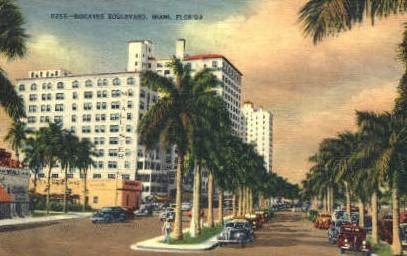 Biscayne Boulevard - Miami, Florida FL Postcard
