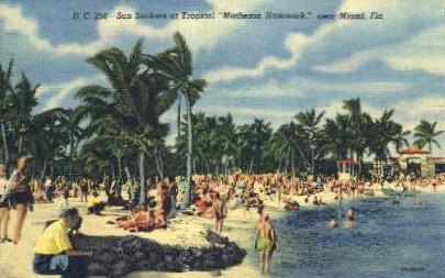 Matheson Hommock - Miami, Florida FL Postcard