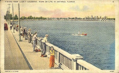 County Causeway - Miami, Florida FL Postcard