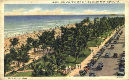 Lummus Park - Miami Beach, Florida FL Postcard