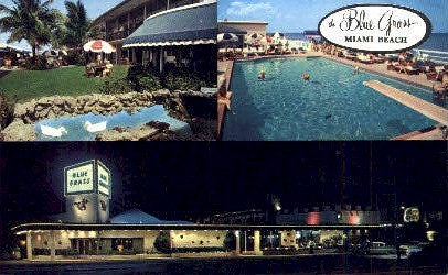 Blue Grass Motel - Miami Beach, Florida FL Postcard