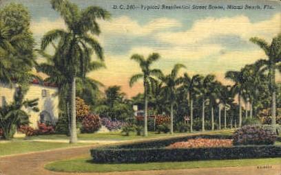 Residential Street - Miami Beach, Florida FL Postcard