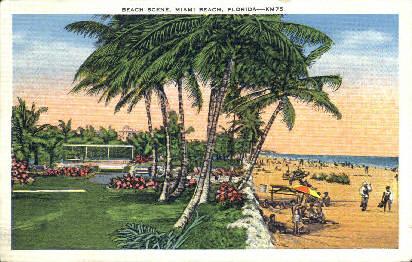 Beach - Miami Beach, Florida FL Postcard