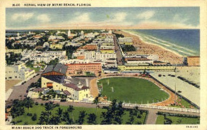 Dog Track - Miami Beach, Florida FL Postcard