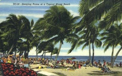 Swaying Palms - Miami Beach, Florida FL Postcard