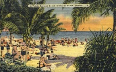 Public Bathing Beach - Miami Beach, Florida FL Postcard