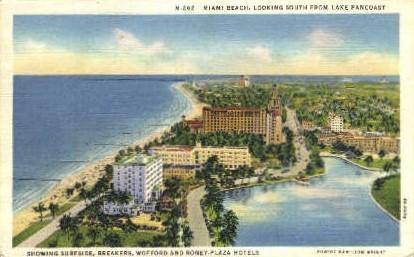 Roney Plaza - Miami Beach, Florida FL Postcard