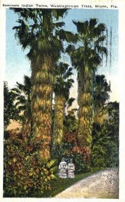 Seminole Indiam Twins - Misc, Florida FL Postcard