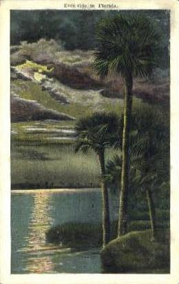 Tide - Misc, Florida FL Postcard